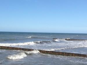Turnus rehabilitacyjny dla dzieci nad morzem (5)