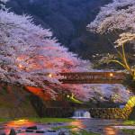 Wycieczka do Japonii