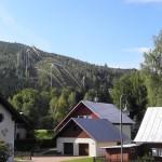 Tatrzańska Przyroda – fauna i flora w Tatrach