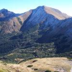 Rośliny występujące w Tatrach