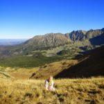 Tatrzański Park Narodowy rośliny i zwierzęta